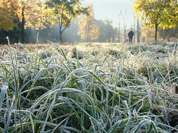 Вгосударстве Украина ожидаются ночные заморозки имокрый снег— Погода навыходные