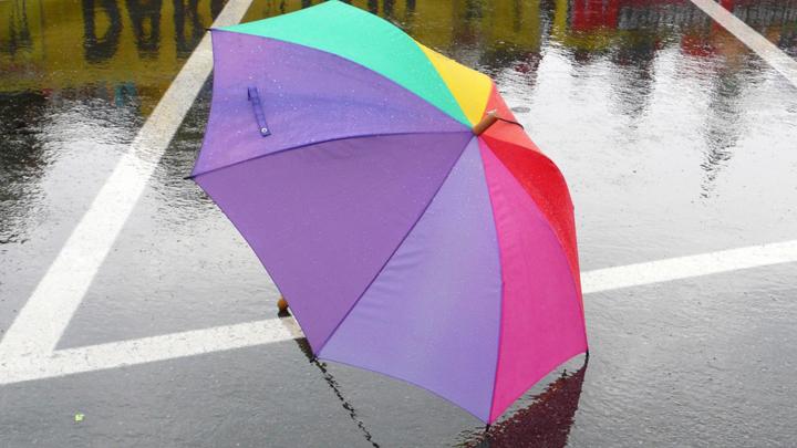 Уходим в плюс: прогноз погоды в Свердловской области 21-24 октября