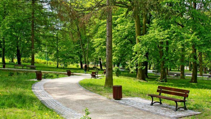 Три сквера в Екатеринбурге получили особый охранный статус