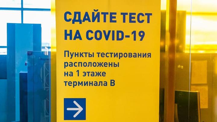 Статистика по COVID-19 в Свердловской области на 29 апреля