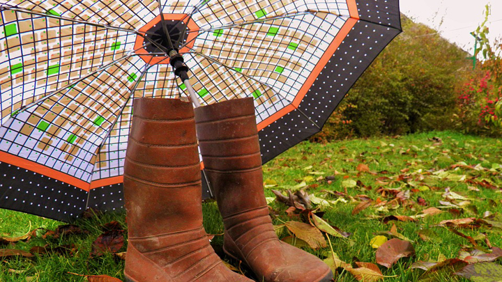 Здравствуй, осень: погода в Свердловской области 26-28 августа